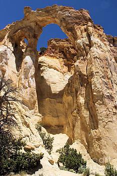 Adam Jewell - Towering Arch