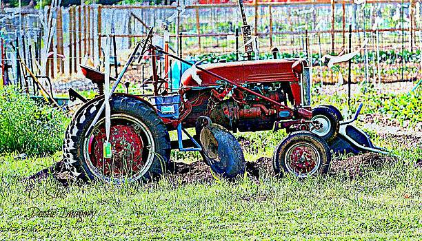 Tractor by Debbie Sikes