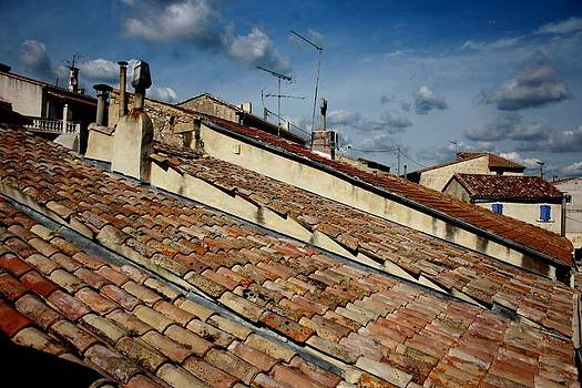 Traditional roofs by Frederic Vigne