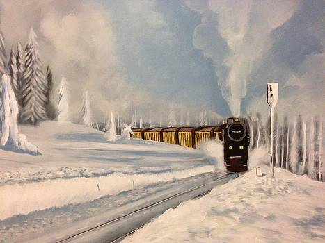 Train on Snowy Railway by Biren Biren