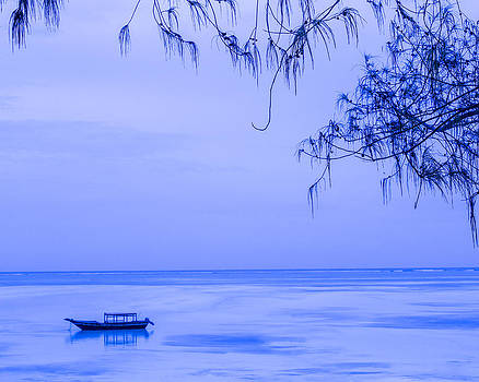 Tranquility in Blue    Nontextured by Diane Geddes