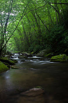 Tranquility in the Great Smoky Mountains National Park by Karen Lawson