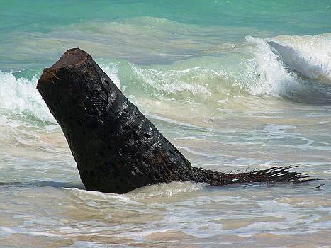 Travis In The Water by Fredrik Ryden