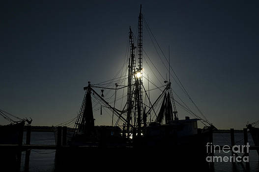 Tim Mulina - Trawler Silhouette