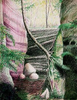 MB Matthews - Tree Clinging to Rock Wall