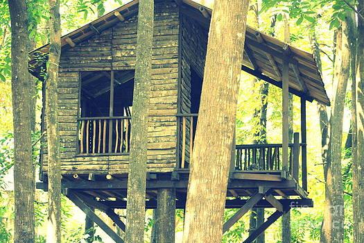 Gai Sin Liem - tree house with canon e0s1000d