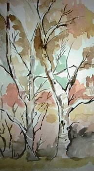 Tree by Jasmine Farooqi