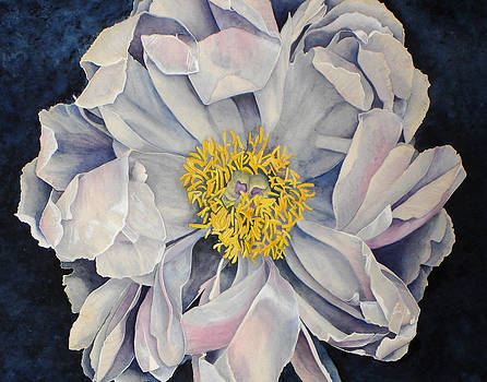 Tree Peony by Yvonne Scott