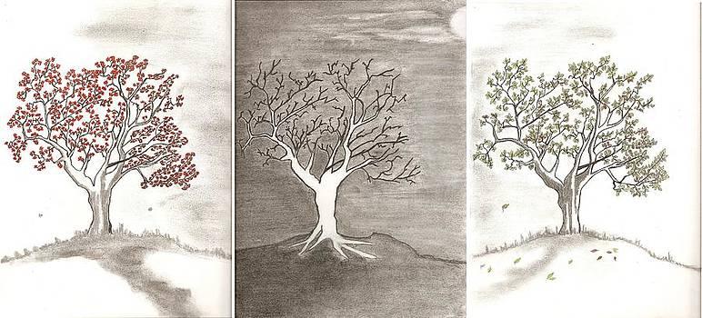 Tree Seasons by Salomi Prakash