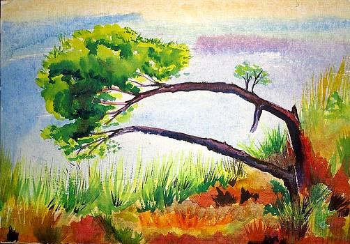Tree by Vijayendra Bapte