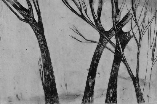 Trees by Nancy Mitchell