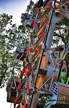 TSC Photography Timothy Cuffe Jr - Treetop Ride