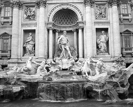 Trevi Fountain by Diana McClure