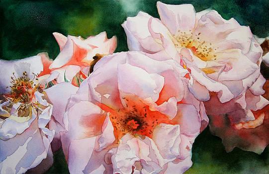 Trish's Roses by Kathleen Ballard