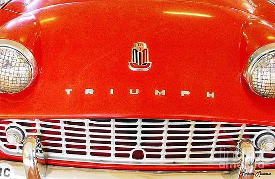 Triumph by Lorraine Louwerse