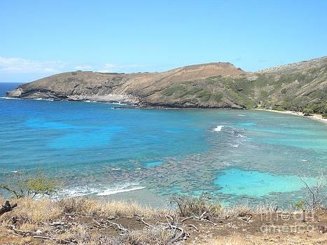 Silvie Kendall - Tropical Bay