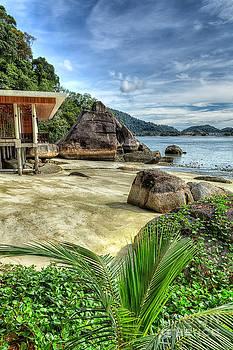 Adrian Evans - Tropical Beach