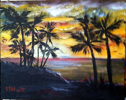 Tropical Beach Sunset by M bhatt