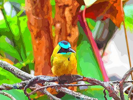 Tammy Bullard - Tropical Bird Cartoon Image