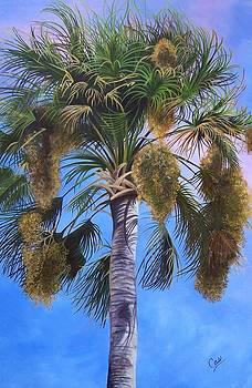 Tropical Breezes by Karen Casciani