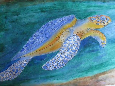 Tropical Turtle by Fran Haas