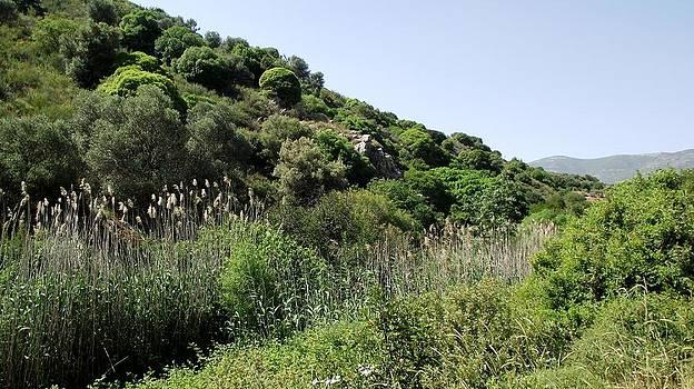 Reli Wasser - Tsalmon River-17
