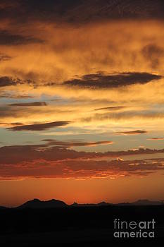 Tucson SunSet by Diane Greco-Lesser