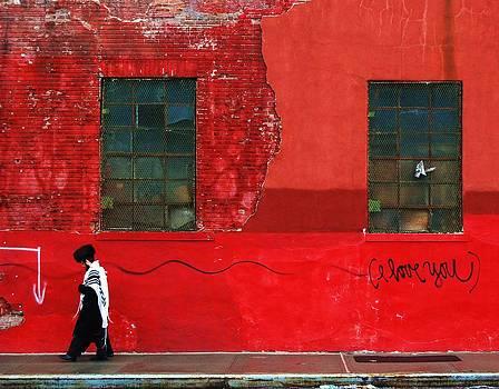 Tuesday The Rabbi Saw Red by Tim  Schreier