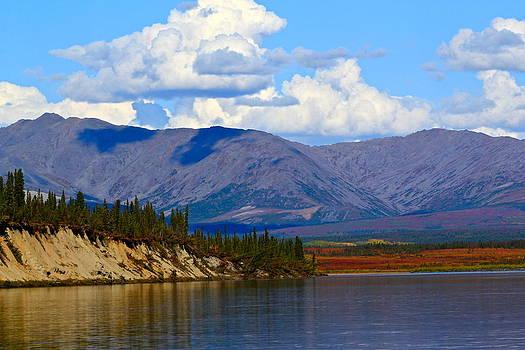 Tundra Hues by Kelly Turnage