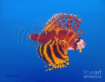 Turkey Lionfish by Michael Allen