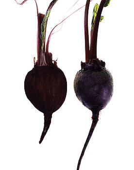 Turnip by Nathaniel Kolby