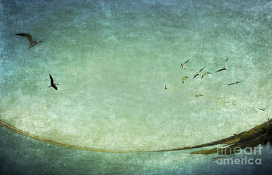 Susan Gary - Turquoise World