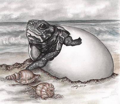 Turtle Beach by Kathleen Kelly Thompson
