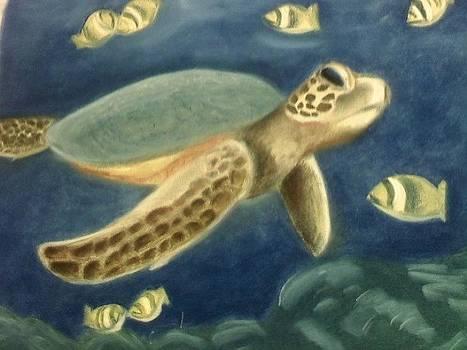 Turtle by Farah Cinquegrani