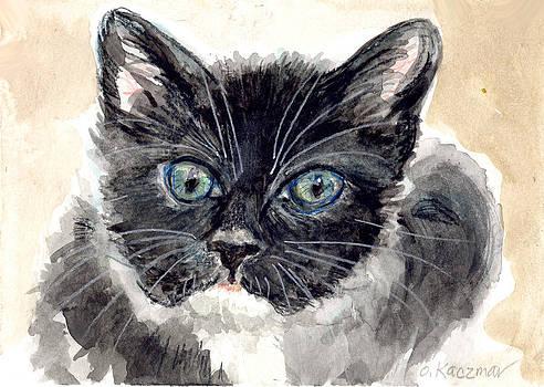 Olga Kaczmar - Tuxedo cat