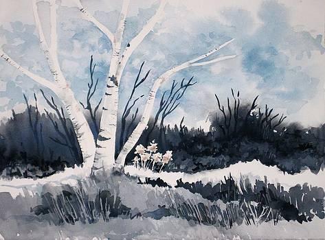 Twilight Birch by Renee Goularte