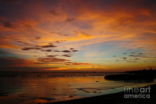 Twilight Colors by Joan McCool