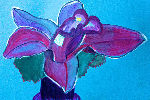 Twisted Purple Orchid With Foreshortening And Chromatic Aberration by Jennifer Woodworth