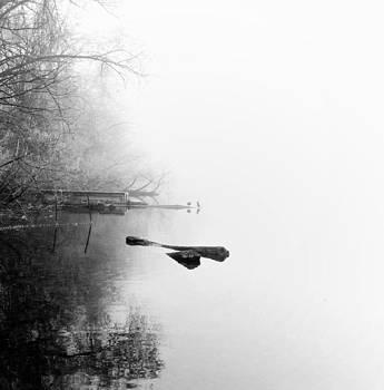 Two Little Birds by Daniel Berman
