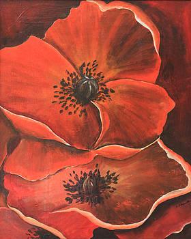 Two poppys by Robert Thomaston