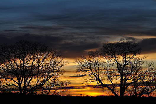 Two Tree Sunsrise 2 by Peter  McIntosh