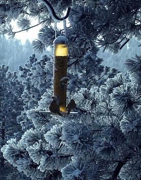 Two Winter Birds by Ric Soulen