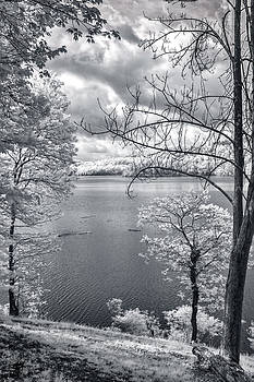 Mary Almond - Tygart Lake