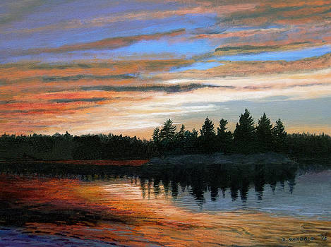 Tyson Lake Sunset Number 4 by Doug Goodale