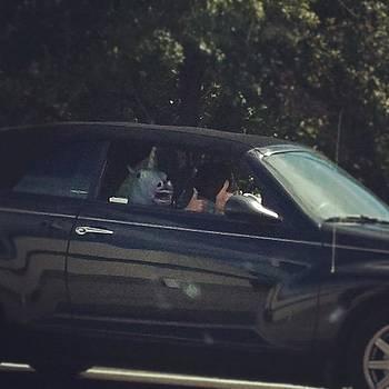 Um Guys.... I Just Saw A Unicorn Riding by Trey Jackson