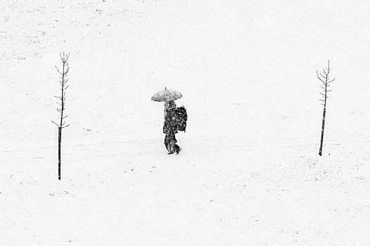 Zoran Buletic - Umbrella