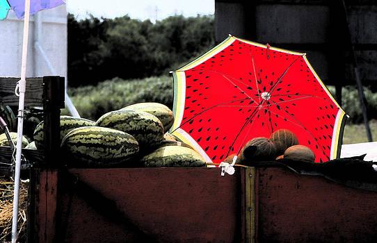 Umbrellamilion by Bob Whitt