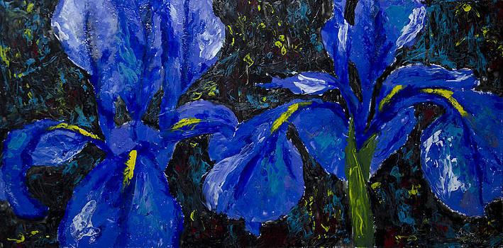 Una Coppia Di Sorella Iris by Aaron Acker