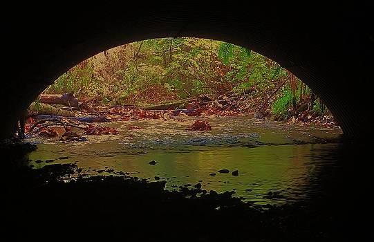 Under the Bridge by Ami Tirana