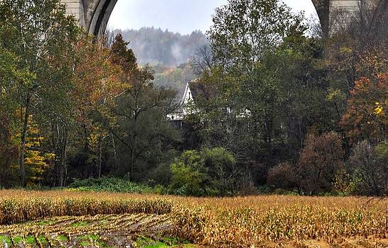 Mary Frances - Under The Bridge II